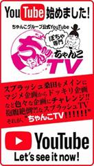 ぽちゃ専門ちゃんこTV